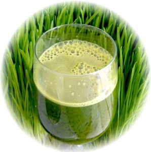 Wheat Grass Drink